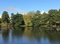 University of York2